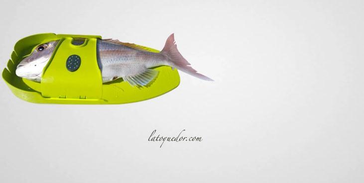 Planche Ikiboard pour pistolet d'abattage à poisson